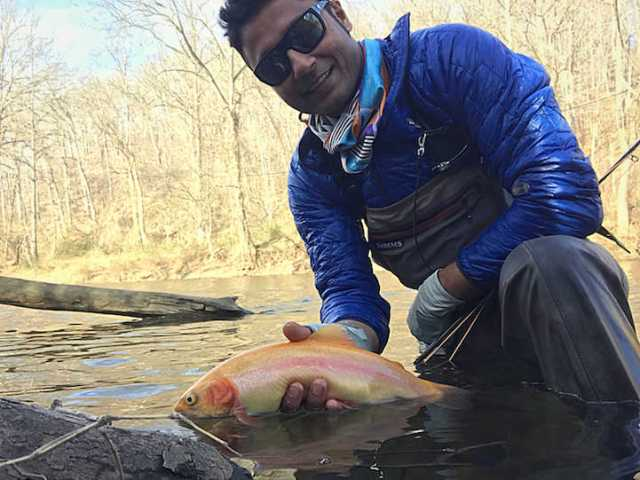 Fly fishing Patapsco river Maryland