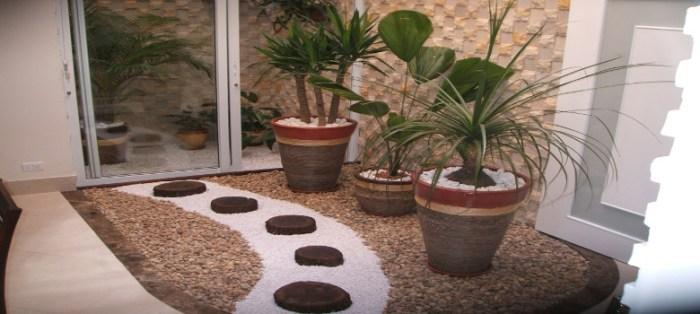 Como Escolher Plantas Para Jardim de Inverno