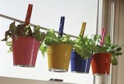 mini horta Enfeites para Cozinha