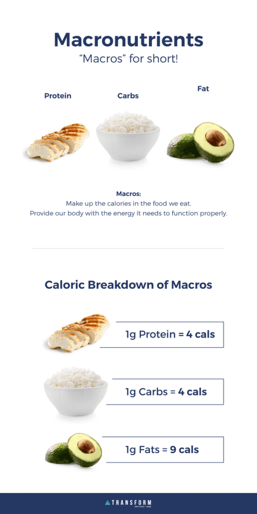 macronutrients, or macros for short