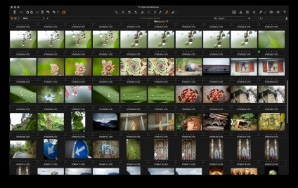 Hiding the both the viewer and tool panes shows a full-screen image browser.