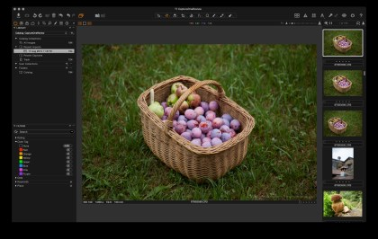 Canon 5D image imported to Capture One, with no processing.