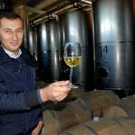 Crama La Salina,   locul în care vinul turdean a renăscut