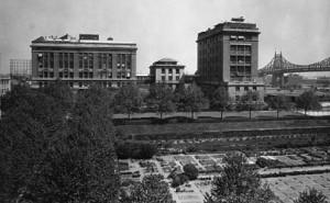 Rockefeller Institut for Medical Research