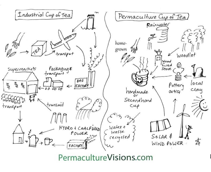 permaculture-cup-of-tea