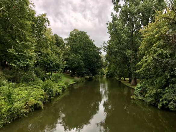 Photography: Greenery in Bruges