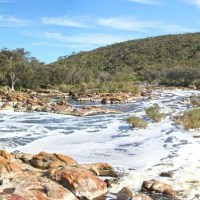 Walyunga National Park Bush Walk by Guildford Outdoors