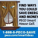 14-239 PECO Window Ogre Digital Banner Ad_180x150_FINAL3