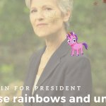 Jill Stein's Ridiculous Run