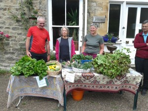 Gibside Farm at last year's festival