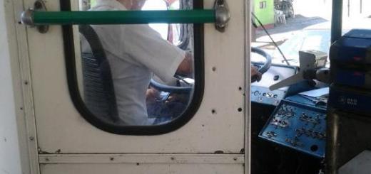 Una chofer fue fotografiada usando su celular mientras conducía (Foto: @AnyJayJay)