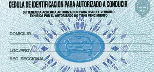 Formato tipo de la cédula azul que entrega la Dirección Nacional del Registro de la Propiedad del Automotor