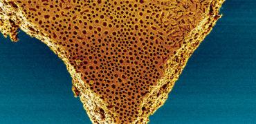 self-flexingmembrane