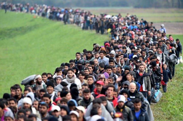 Immigration: Many Myths and Little Reality