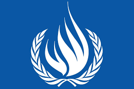 Relatores de la ONU y del sistema interamericano alertan del deterioro de la libertad de prensa en Venezuela