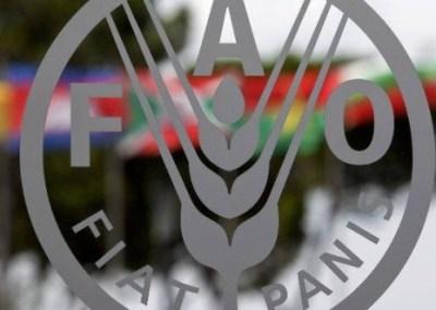 El hambre en Venezuela: Más allá del informe de la FAO