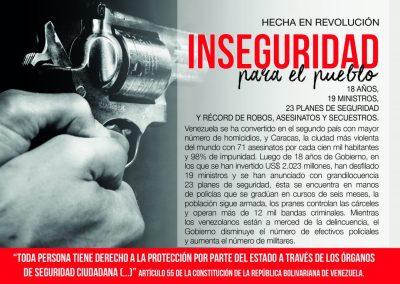 INSEGURIDAD para el pueblo hecha en revolución