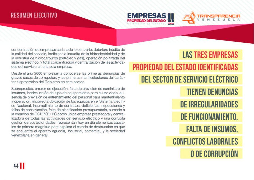 EPE II - Resumen ejecutivo, Transparencia Venezuela_Página_44