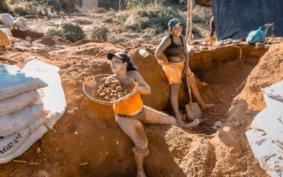 Oro mortal: entre el crimen organizado, el ecocidio y la corrupción