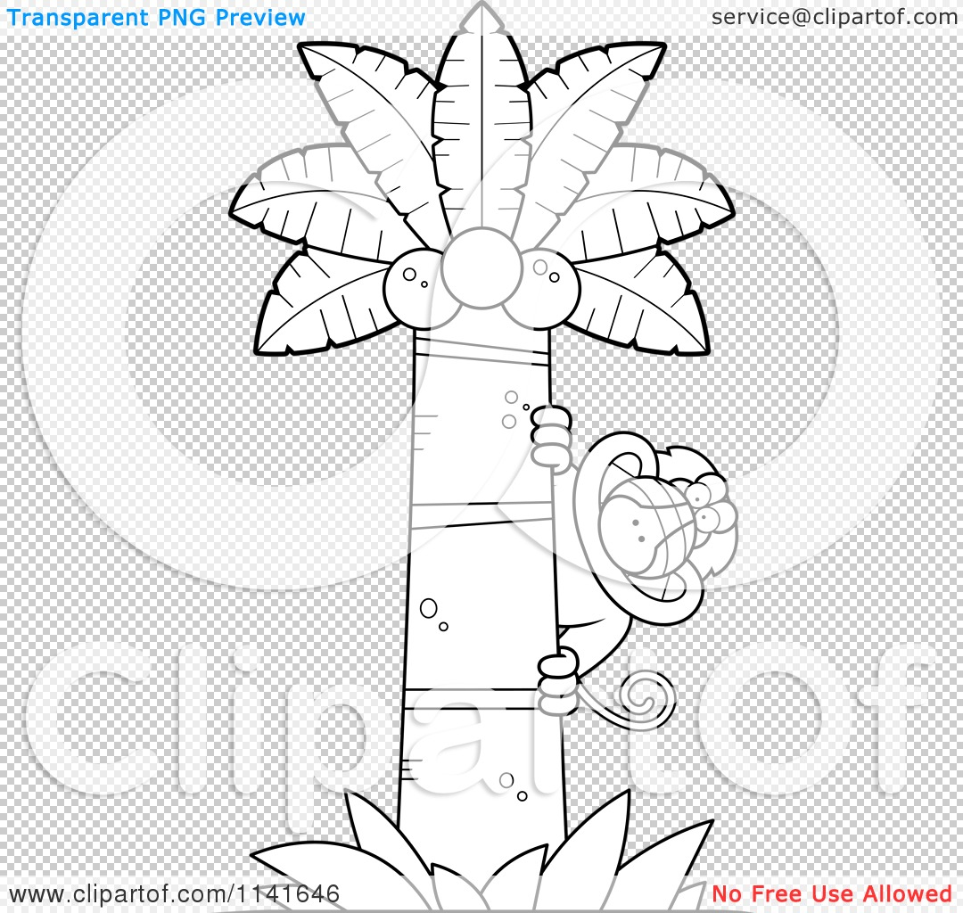 Ape Palm Tree
