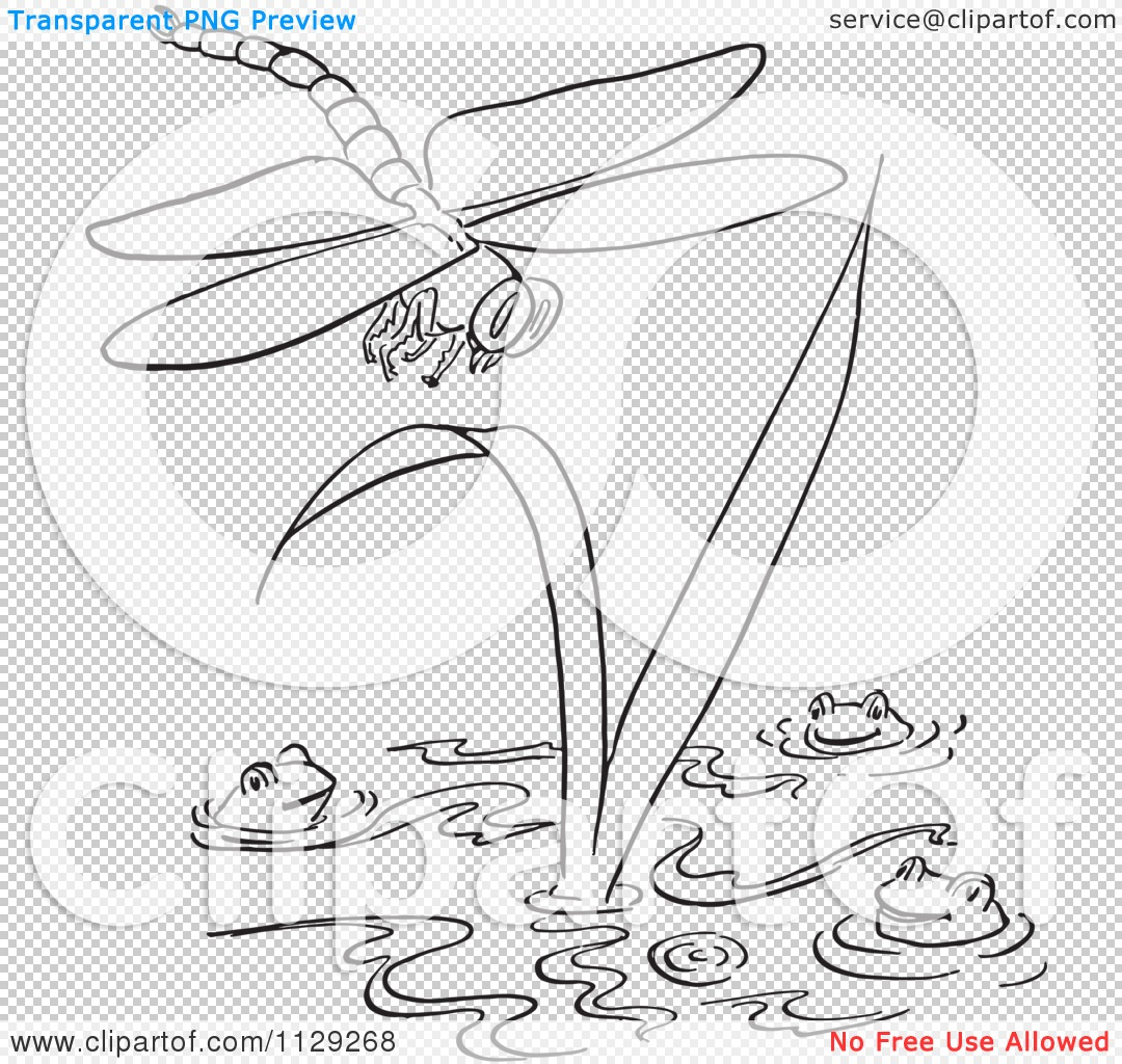 Cartoon Clipart Of An Outlined Dragonfly Over Frogs In A