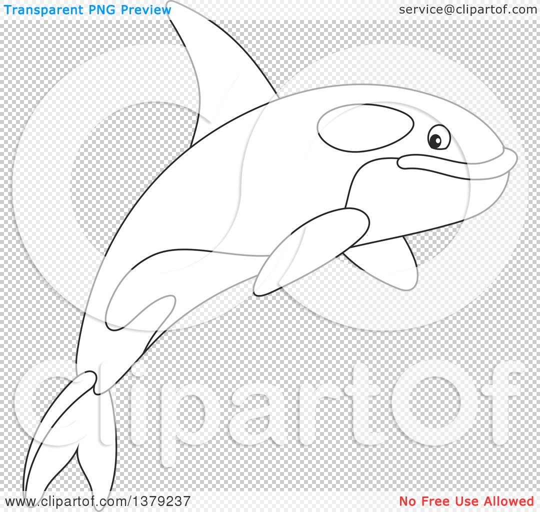 Clipart Of A Black And White Cute Leaping Orca Killer