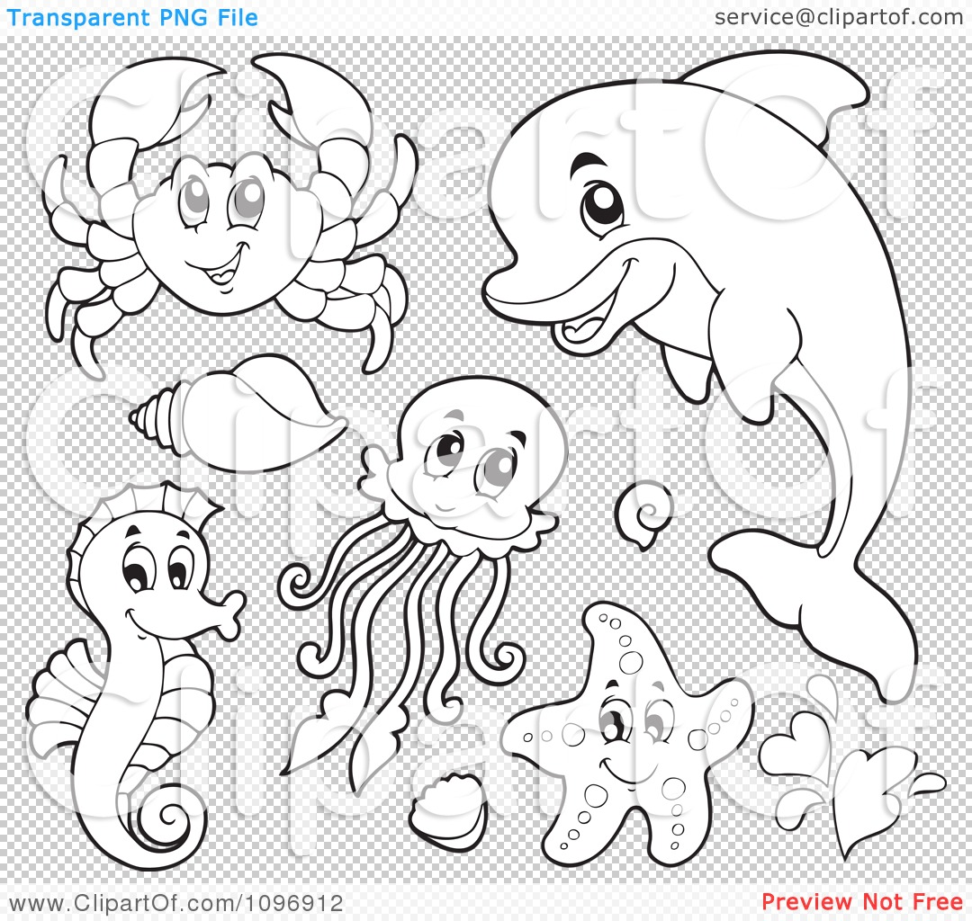 Clipart Outlined Cute Crab Dolphin Squid Seahorse And