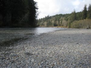 Some public lands still allow camping on river banks and beaches.