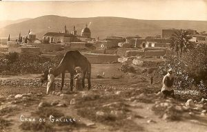 Postcard of Cana in Galilee, by Karimeh Abbud