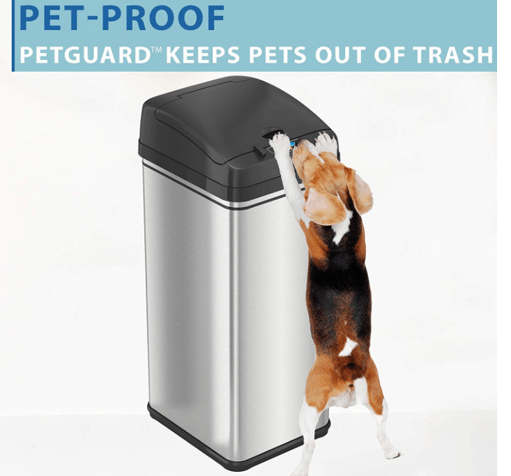 animal proof trash can