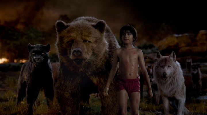 THE JUNGLE BOOK - (L-R) BAGHEERA, BALOO, MOWGLI and RAKSHA. ©2016 Disney Enterprises, Inc. All Rights Reserved.