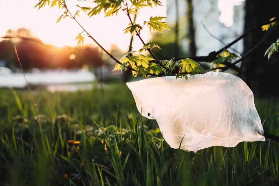 no more plastic bags