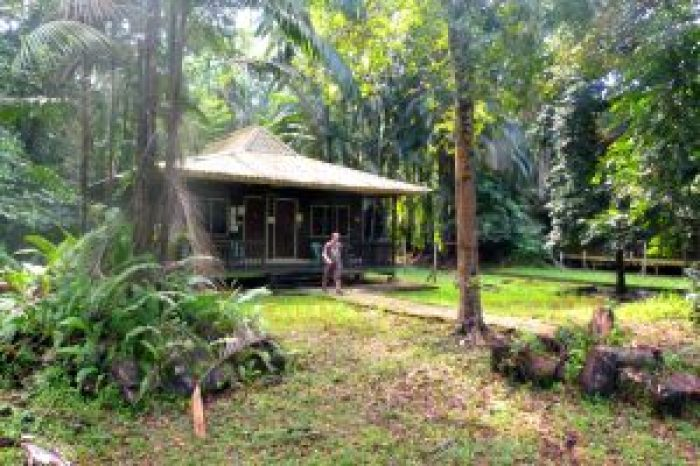 Forest House Bako NP