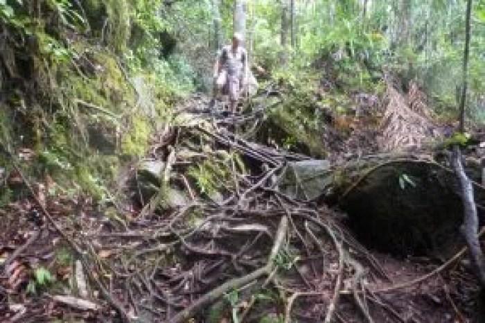 El trail a Pandal Kecil, Parque Nacional de Bako