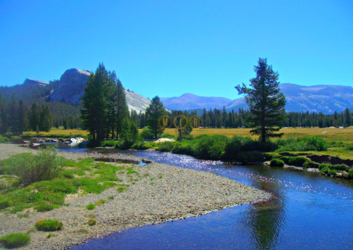 Yosemite Tuolumne Meadows