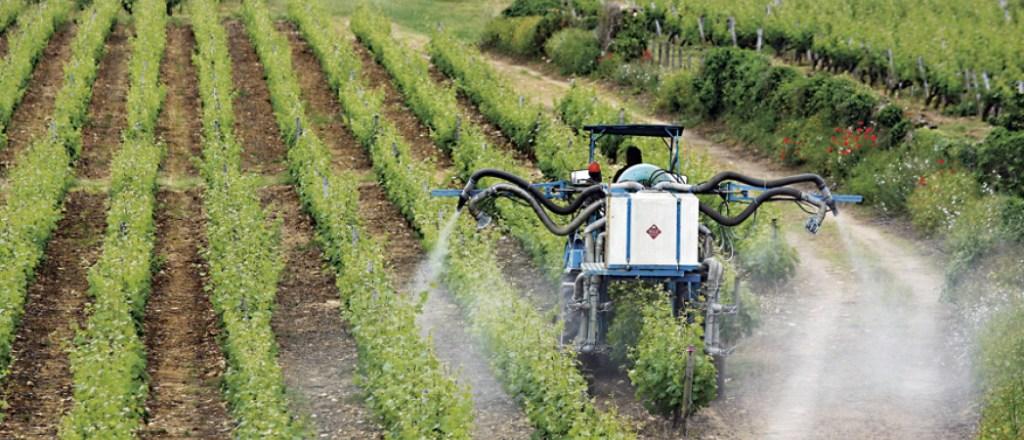 Article blog pesticides dans les boissons alcoolisées