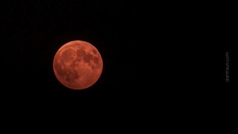 2015-09-27 Super Blood Moon-07