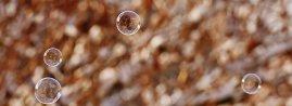 soap-bubble-1949897__340
