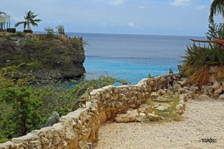 Curacao Leguane 1t