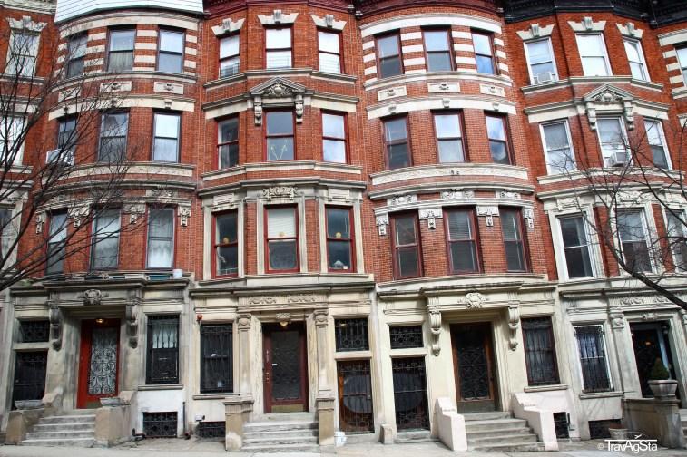 Harlem (3)t