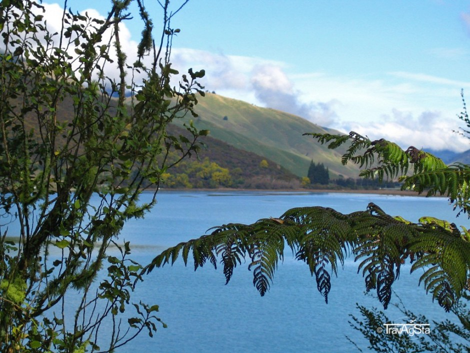 Marlborough Sound - New Zealand