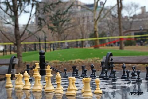 Washington Square Park (3)t