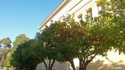 NAtionalgarten (2)t