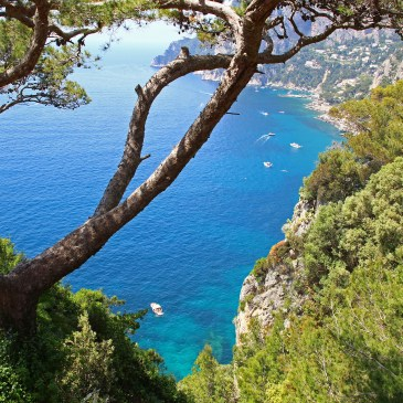 The Isle of Capri – Island of love, arts and wealth!