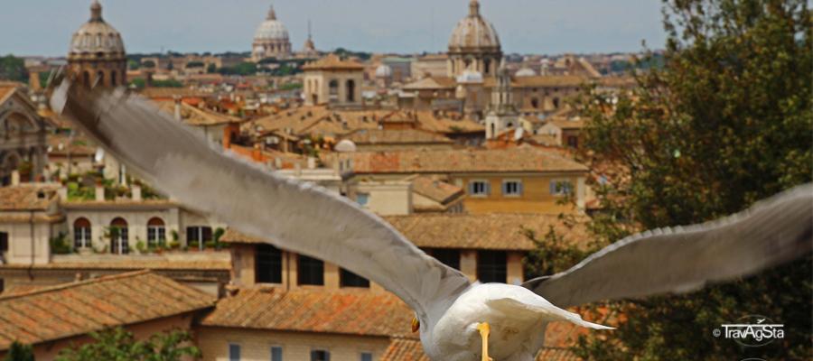 Rom von oben!