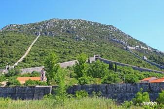 Vineyards, Croatia
