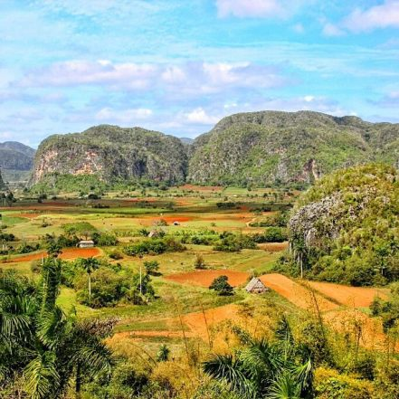 Ever thought about visiting Cuba?Or already planing a trip?If the answer is yes, never ever forget to visit Viñales! Mogotes and tobacco fields everywhere. Mogotes exist only twice in the world: China and Cuba! You can read more on travagsta.com