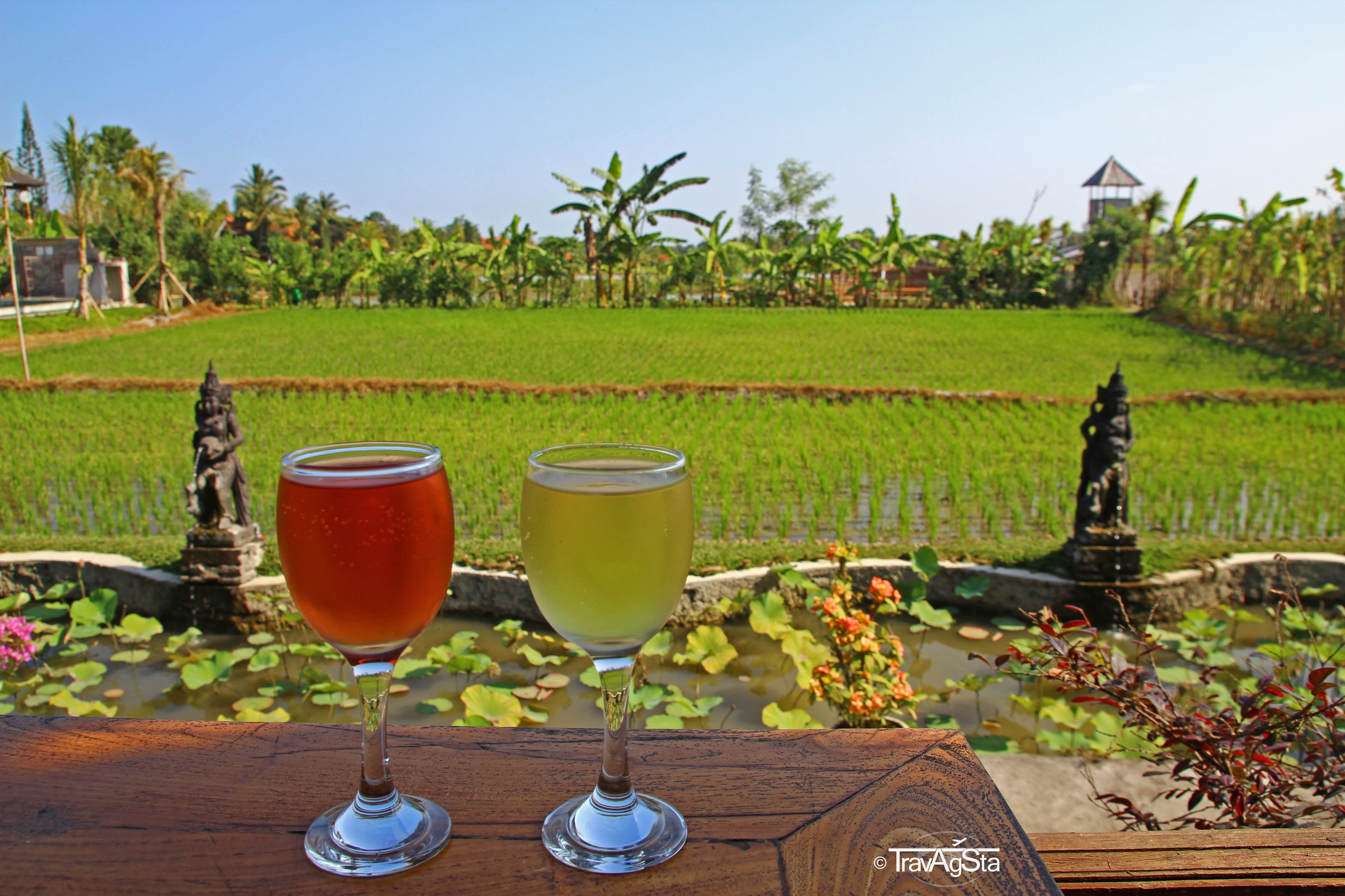 Bali for beginners – What you have to know!