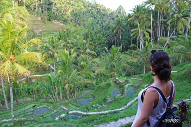 Tegalalang Rice Fields (6)t