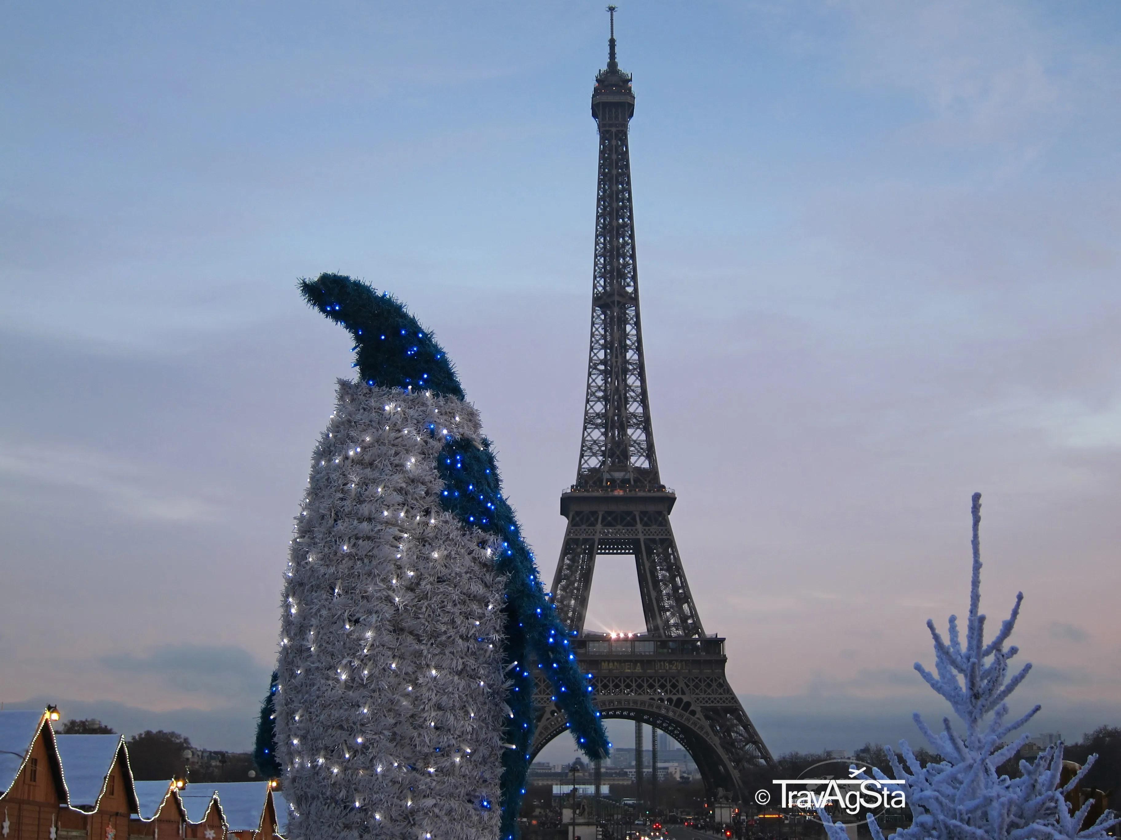 Warum ihr Paris zur Weihnachtszeit besuchen solltet!